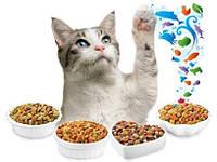 Классы кормов для кошек