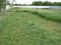 Покос травы цена