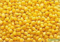 Кукуруза сахарная замороженная (зерно)