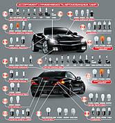 Лампы для легкового транспорта
