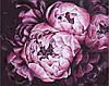 Раскраска по номерам без коробки Идейка Королевские пионы Худ Диана Тучс (KHO2076) 40 х 50 см