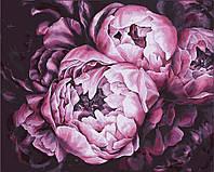 Раскраска по номерам без коробки Идейка Королевские пионы Худ Диана Тучс (KHO2076) 40 х 50 см, фото 1