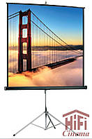 Projecta Professional 152x152 см, MW ручной проекционный экран 81 дюйм на штативе