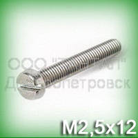 Винт М2,5х12 нержавеющий ГОСТ 1491-84 (DIN 84, ISO 1207) с цилиндрической головкой