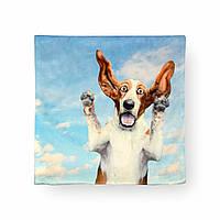 Наволочка декоративная Безумный пес, 42х42 см