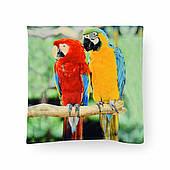 Наволочка декоративная Папугай, 42х42 см