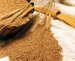 О пользе гранулированного корма
