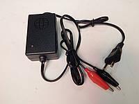 Зарядное устройство  мото( автомат)