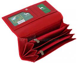Женский кожаный кошелек красный Marco Сoverna MC-2028-2, фото 2