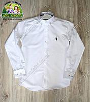 Рубашка для мальчика Polo белая