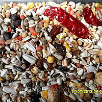 Корм для крупных попугаев (Beyers Deli Nature - 61 ), фото 1