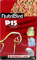 Versele-Laga NutriBird P15 ТРОПИКАЛ ОРЕХИ И ФРУКТЫ (Tropical) корм для крупных попугаев, фото 1