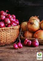 """Комплект семян овощей на развес """"Чудесный лук"""" 5уп"""