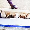 Швабра с отжимом моп твистер Twister Mop Twist, фото 6
