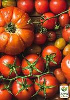 "Комплект семян овощей на развес ""Сеньор помидор"" 10уп"