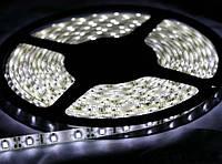 SMD 3528 светодиодная лента 5м White 300 диодов