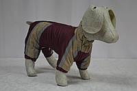 Комбинезон для собаки на синтепоне Заря- распродажа размеров, фото 1