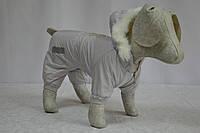 Комбинезон для собаки Сильвер на флисе