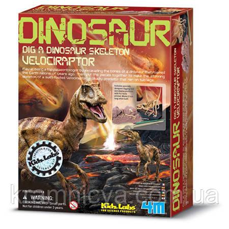 """Раскопки динозавра """"Велоцираптор"""""""
