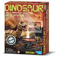 """Раскопки динозавра """"Велоцираптор"""", фото 1"""