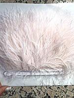 Перьевая тесьма из перьев страуса, бледно -розовый темный .Цена за 0,5м