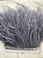 Перьевая тесьма из перьев страуса, серый темно-пепельный .Цена за 0,5м