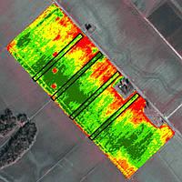 Спутниковый мониторинг полей