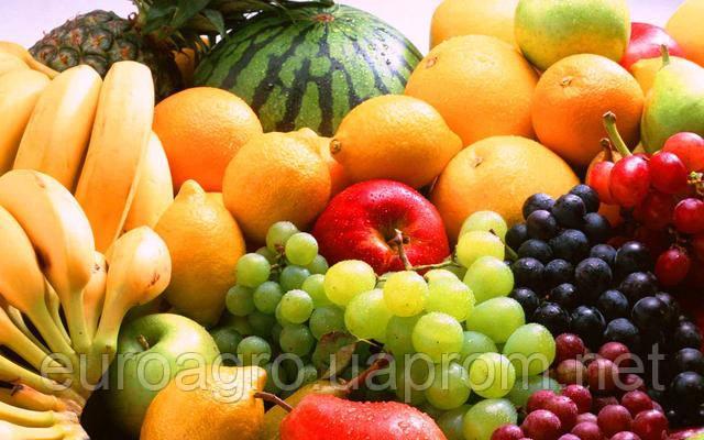 Импортный спрос на украинские фрукты (инфографика)