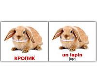 "Карточки мини русско-французские ""Дом. живот./Les animaux domestiques"" 20 карт., в пак.10*9см, ТМ Вундер(095801)"