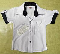 Модная белая рубашка с коротким рукавом для мальчика 1-4 года