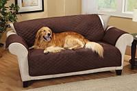 Как правильно выбрать спальное место для собаки