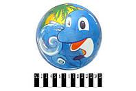 Мяч детский с рисунком. /420/(YT6011)