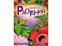 Енциклопедії: Удивительные растения  рус  64стор. тверда обкл. 245х335 /10/(Талант)