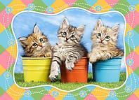 "Кастор пазлы 060  ""Три котенка"" 32*23 /40/(В-06762)"