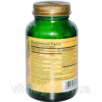Solgar, Травяной комплекс для печени, 50 растительных капсул, фото 2