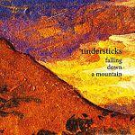 Музыкальный CD-диск. Tindersticks - Falling Down a Mountain
