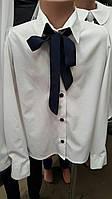 Шкільна  нарядна біла блузочка на 6-10 років