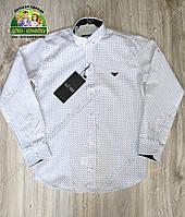 Белая рубашка Armani с длинным рукавом