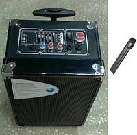 Колонка. Акустичні системи AMC Veini F 88 підсилювач