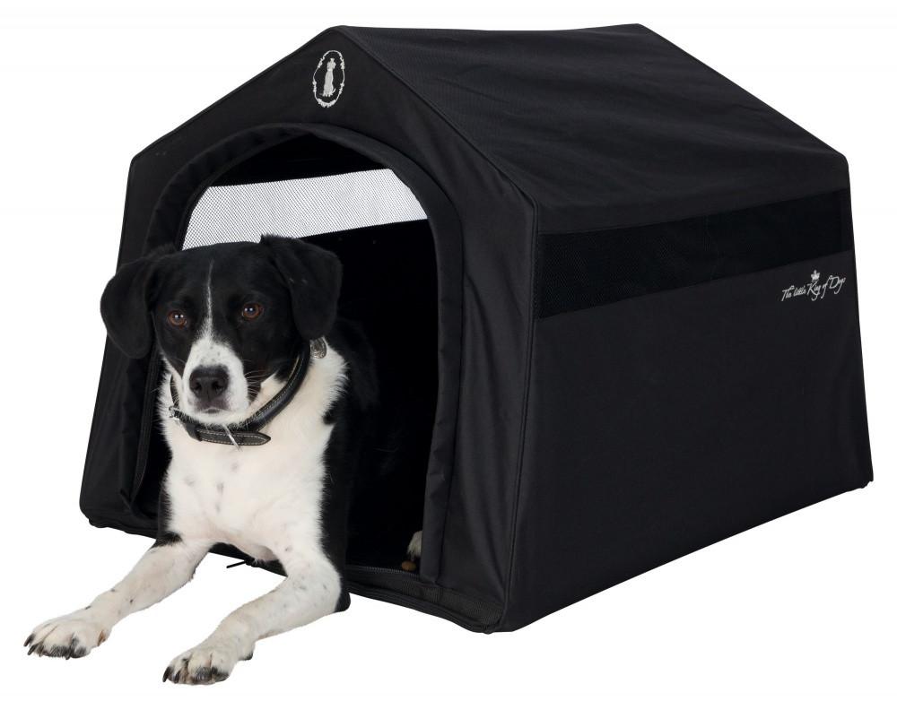 дом знакомств для собак