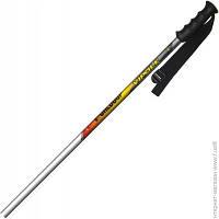Палки Для Лыж Vipole Worldcup 125
