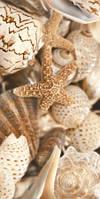 Керамическая плитка декор Sea Breeze, фото 1