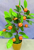 Дерево  мандарин декоративное