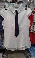 Детская рубашка с галстуком на девочку 8-14лет Турция оптом
