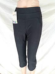 Синие бриджи плотные баттал женские с карманами A443 Ласточка ЛЖЛ-3032
