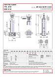 Гидроцилиндр с шарниром и кронштейном Binotto MF 145-4-4100 RP (фронтальный), фото 2