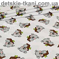 Бязь с серыми мишками коала на веточке дерева (№ 828а)