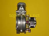 Вентилятор S10088 Saunier Duval Themaclassic F 24 E, F 24 E1, F 25 E, Combitek F 24 E, Thematek F 24 E, фото 5