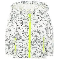 Демисезонная куртка-ветровка для ребенка 4 лет! (полиэстер, хлопок) ТМ Jumping Beans