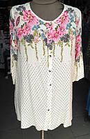 Туники, блузы и футболки женские